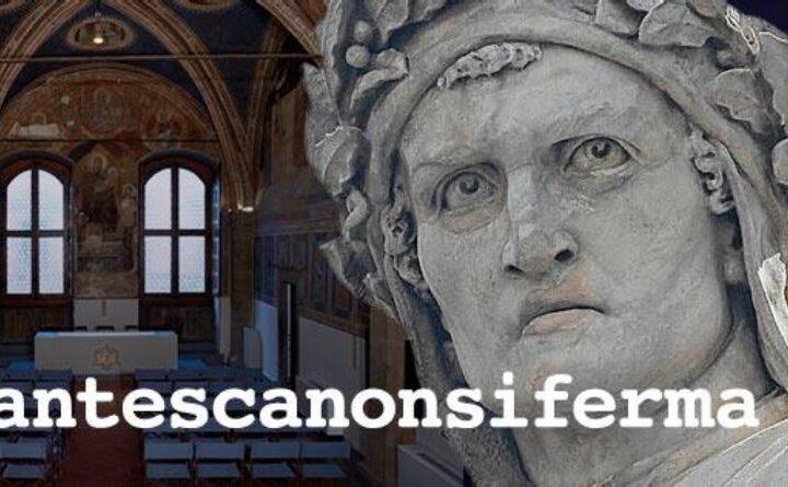 # ladantescanonsiferma